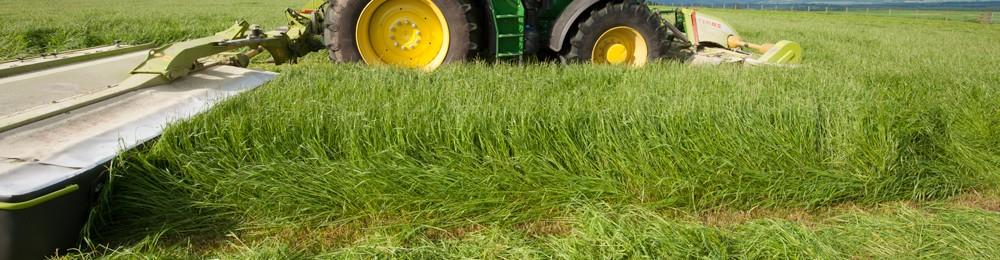 SW Scotland Grassland Society